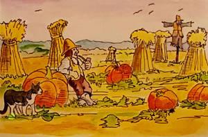 Shire pumpkin patch. by QueenslandChris