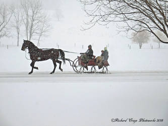 'One Horse Open Sleigh'.... by TribblePom55