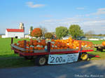 'Pumpkin Wagon'.... by TribblePom55
