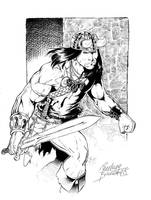 Conan The Cimmerian by Buchemi