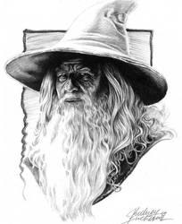 Gandalf by Buchemi
