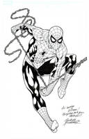 Spiderman commition by Buchemi