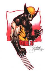 Classical Wolverine by Buchemi
