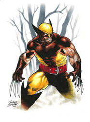 Wolvie Final low by Buchemi