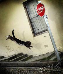 Stop the world... by Marmaluke