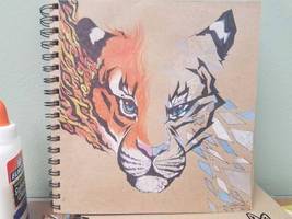 Fire and Ice by SwaggZilla305