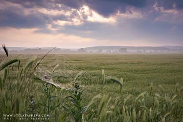 Preserve Zlato Pole by tangratannakra