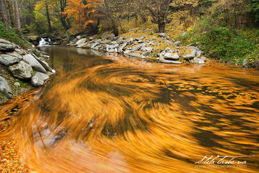 The Whirlpool by tangratannakra