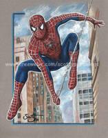 Spiderman by scotty309