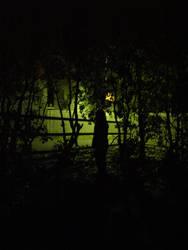 Stranger in the dark by GuddaB