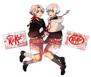 Mr. Kitkat Series: Sakura and Yukimizakura by Cioccolatodorima
