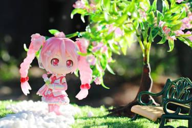 Sakura Love by Awesomealexis1