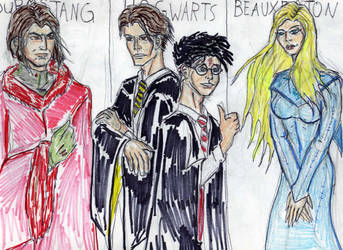 triwizard tournament champions by theaven