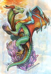 Dragon by dmillustration
