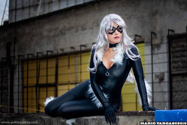 Black Cat Cosplay 3 by Yukilefay