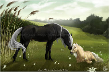 White Lily - commission by AonikaArt