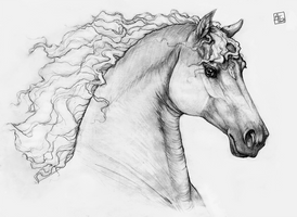 Horse in pencils by AonikaArt