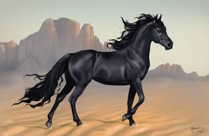 Desert prince by AonikaArt