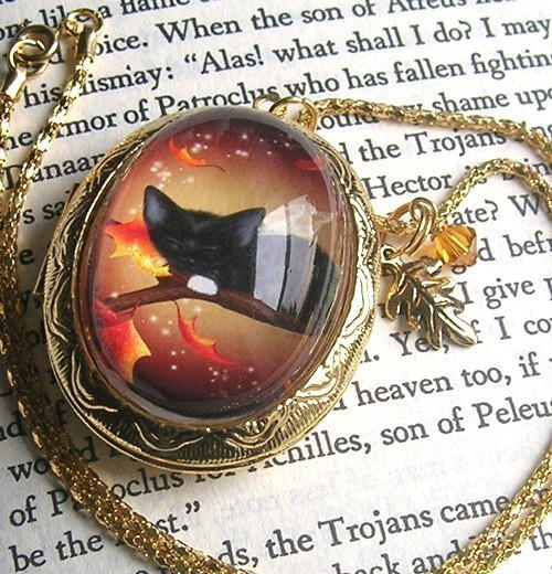Autumn Cat Fairy Locket by MelissaDawn