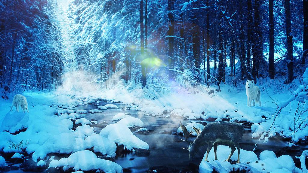 Winter Blues by RenatoSs