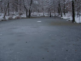 Frozen Lake by Rylius