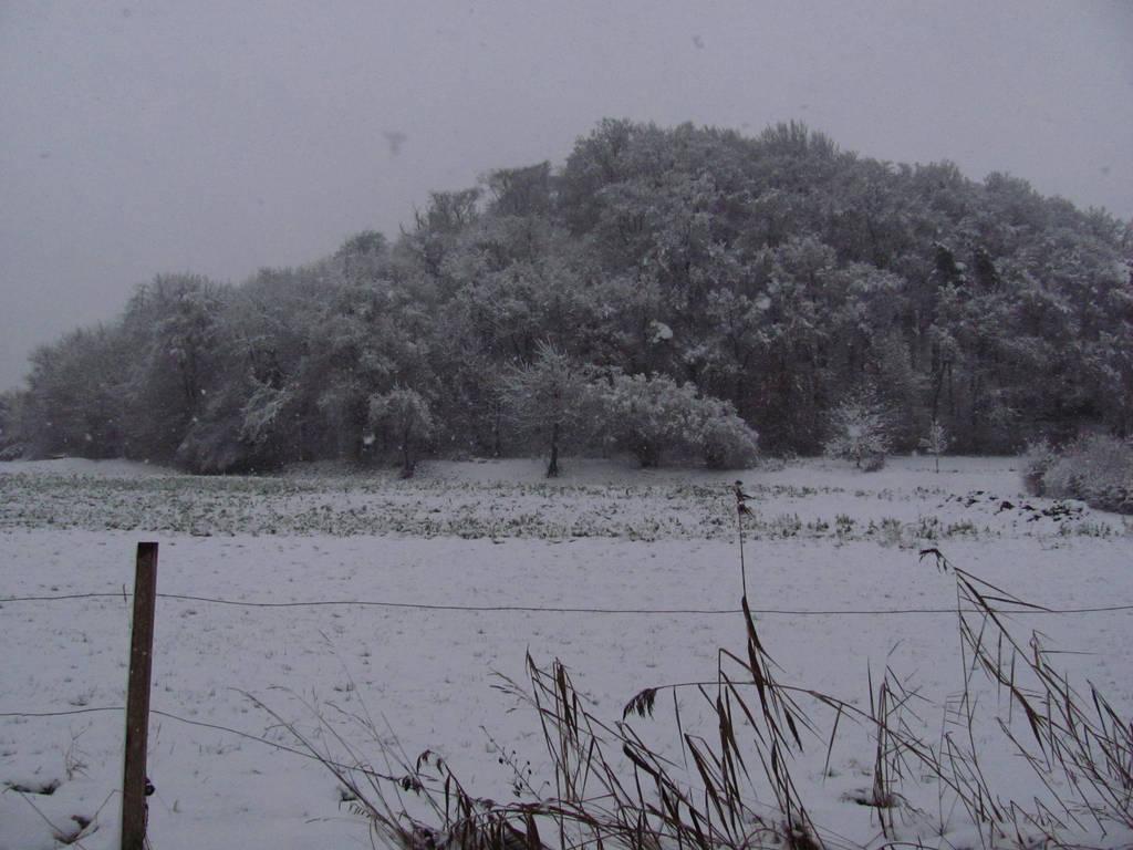 Snowy Hill by Rylius