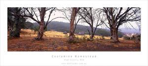 Coolamine Homestead, NSW by MattLauder