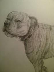 Ripley Sketch by Sidewinder52