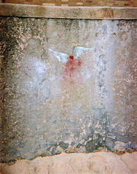 wings of desire by warmsugarcube