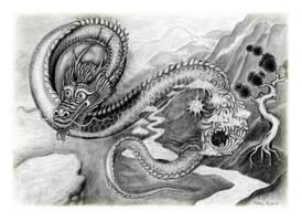 Way of the Dragon by MRojekcom
