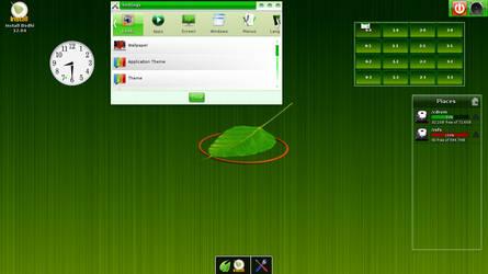 My Fancy Bodhi Linux 2.3.0 by carteirodopoente