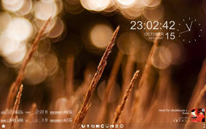 my desktop by experiments4