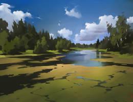 Pond with marsh irises by GaudiBuendia
