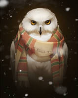 owl in scarf by GaudiBuendia