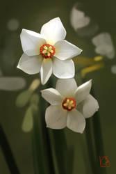 daffodils by GaudiBuendia