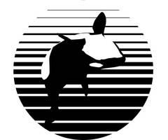 Orca by iamjacksusername