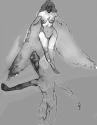 angelorum by Daluba