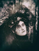 Nevermore by PorcelainPoet
