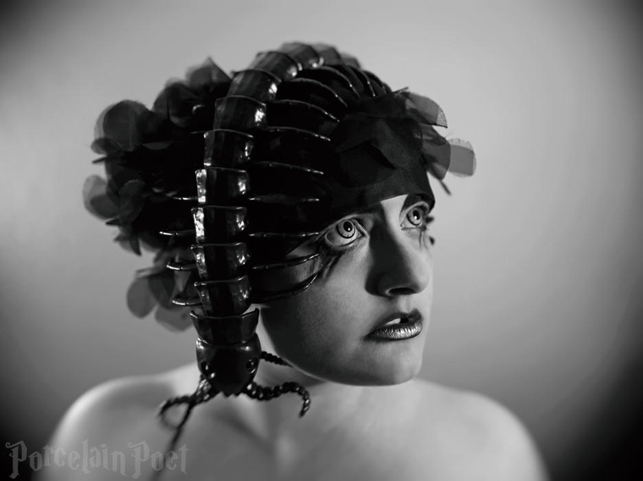 Centipede by PorcelainPoet