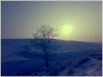 Winter evening by CVRD