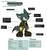 The Illustrated Guide: Murdoch by glitchgoat