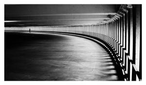 a curve by tomasNY