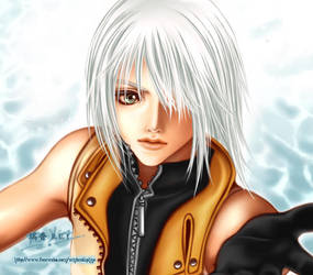 .:KH2 - Together:. by WoodenOrchid