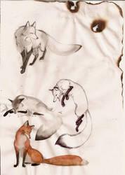 My fox by Orphen-Sirius