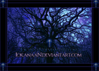 Trees 3 - framed version by iokanaan