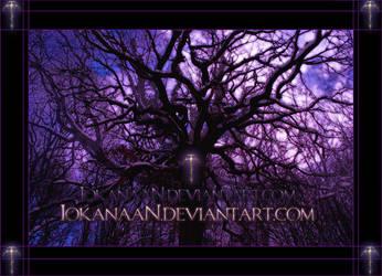 Trees 2 framed by iokanaan
