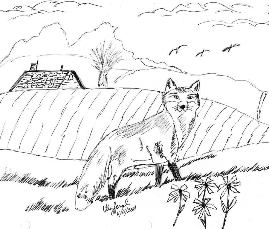 Red Fox Sketch by ulyferal