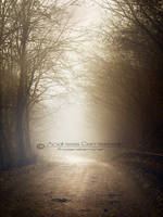 On an autumn day... by FrozenStarRo
