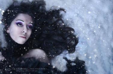 Silent Whispers, Silent Tears by FrozenStarRo