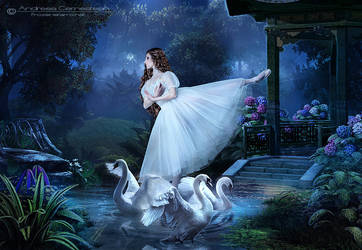 The Graceful Dance of Swans by FrozenStarRo